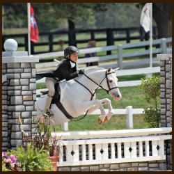 Horse-Show-coaching-in-NJ